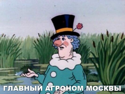 Главный агроном Москвы в мультфильме