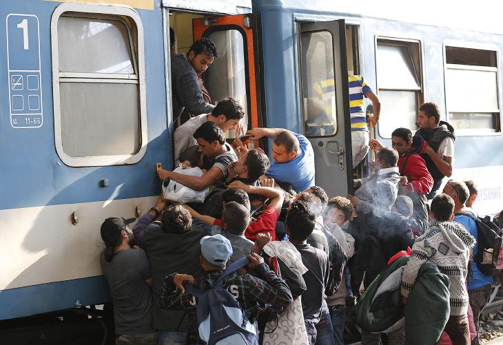 Мигранты в Европе (16 фото)