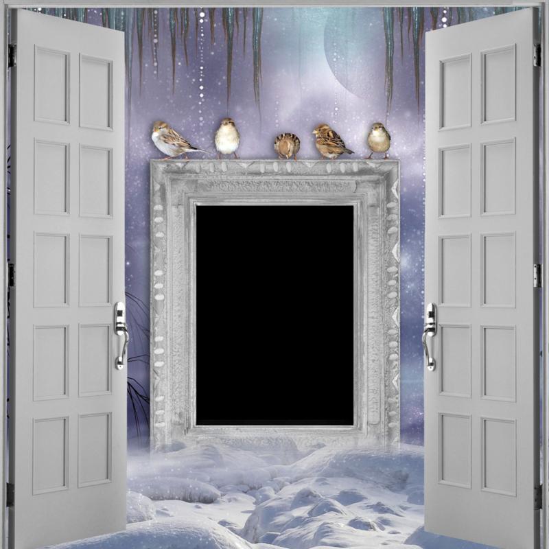 Doors (3).png