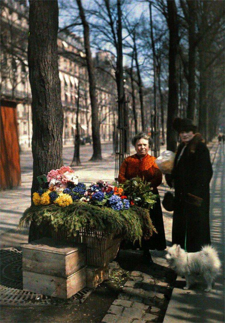 1919. Улица Гоше