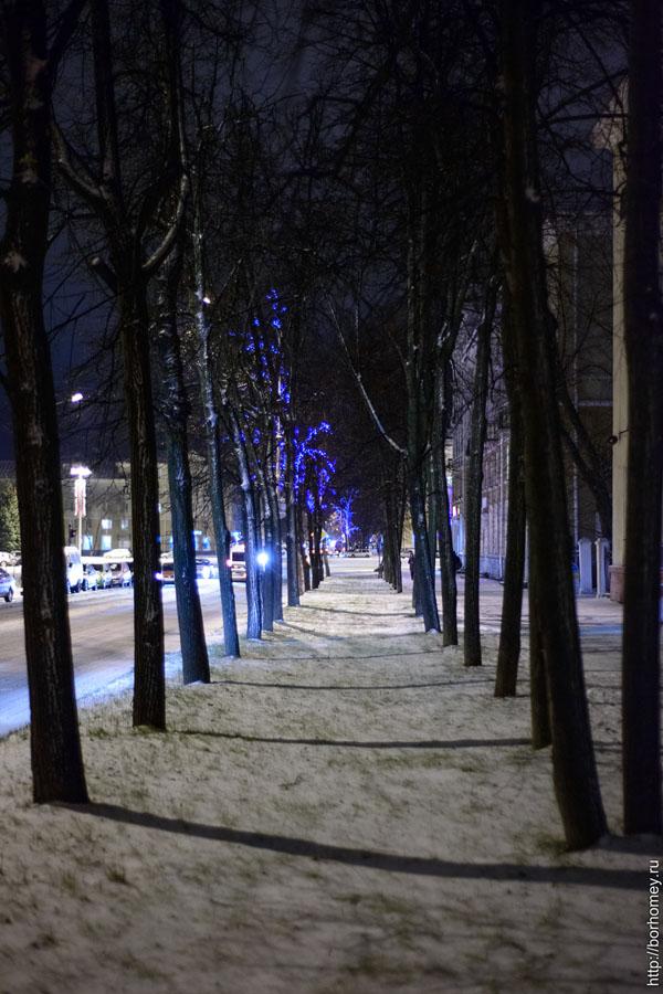 деревья на проспекте