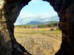 Фото про дырку в прогоревшем дереве и гору Динозавр
