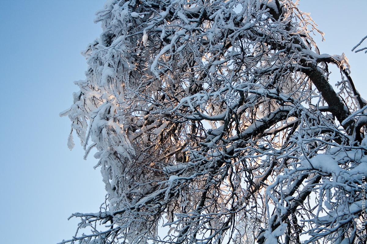 Зима на кумысной поляне 8
