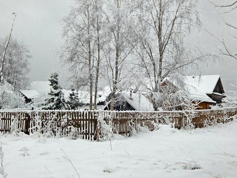 Иней в деревне