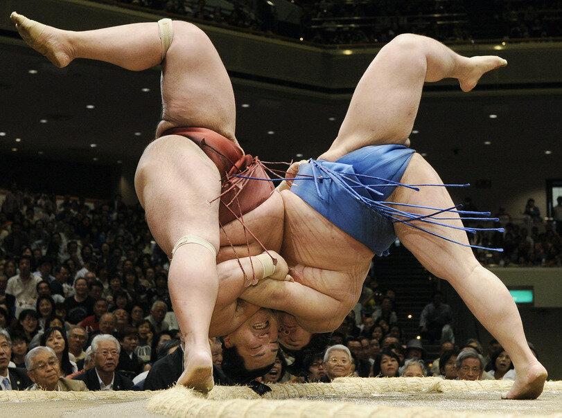 Борцы сумо Тасаютака и Тойохибики