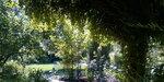Любимый сад jpg