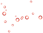 roses forus_element(29).png