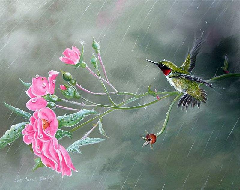 Художница Carol Decker. Птицы Carol Decker. Словно песня птиц чудесных, лунный свет стучится в окна