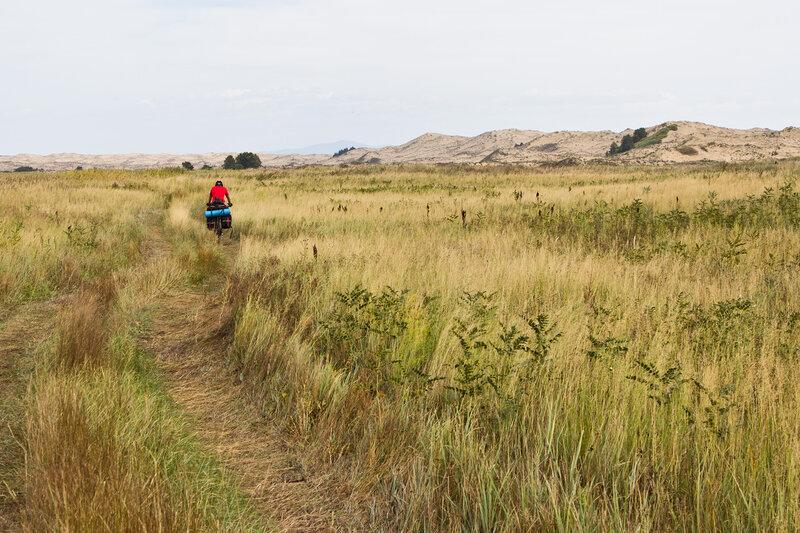 дорожка вдоль Кулджунских песков