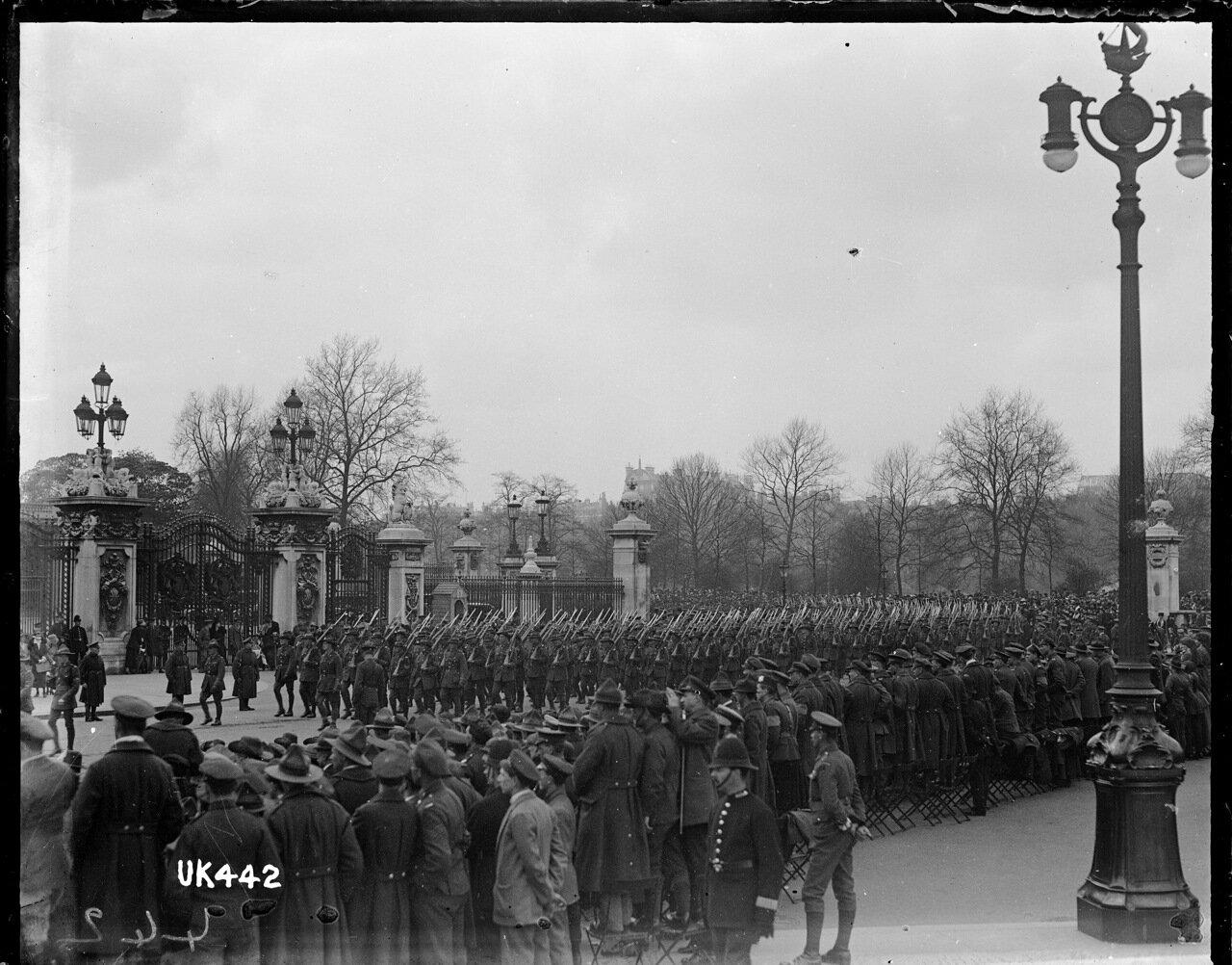 Новозеландские войска у ворот Букингемского дворца