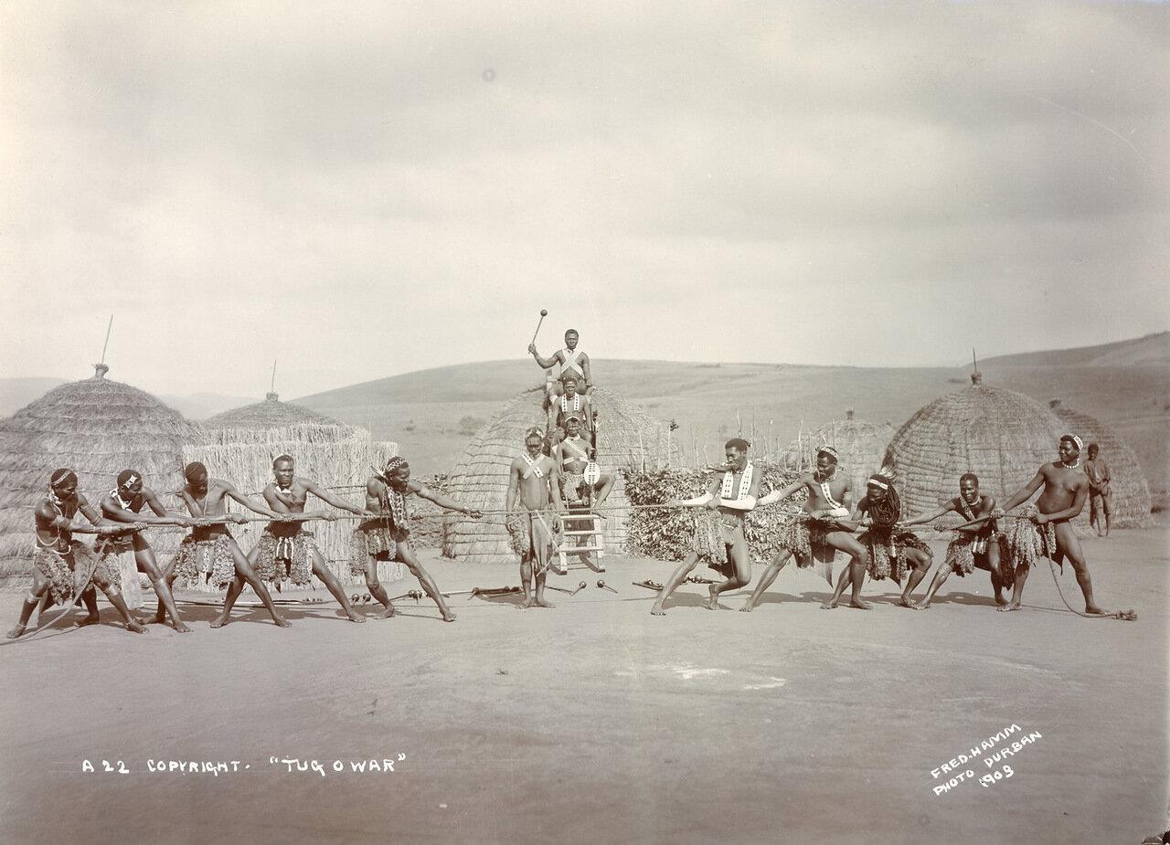 Военный танец зулусов. Южная Африка, 1903