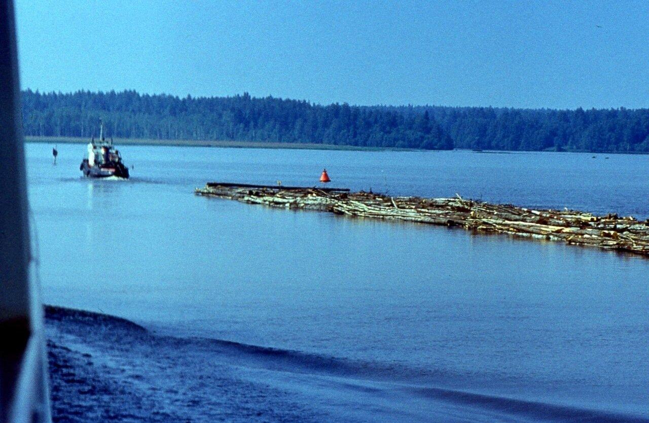 3.  Сплав  леса