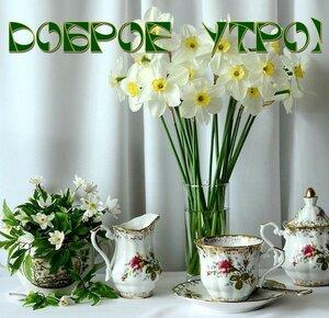 https://img-fotki.yandex.ru/get/931298/131884990.e5/0_15d26e_7f0c9761_M.jpg