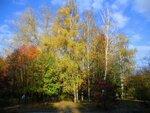 Осенний солнечный денёк.