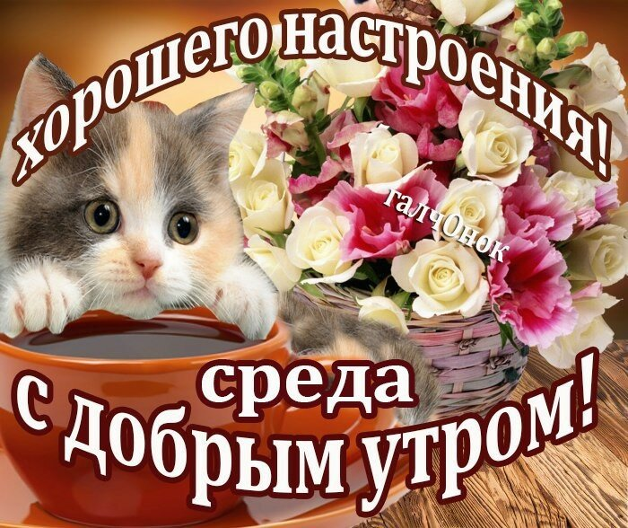 Красивые открытки с пожеланиями хорошего дня среда, днем