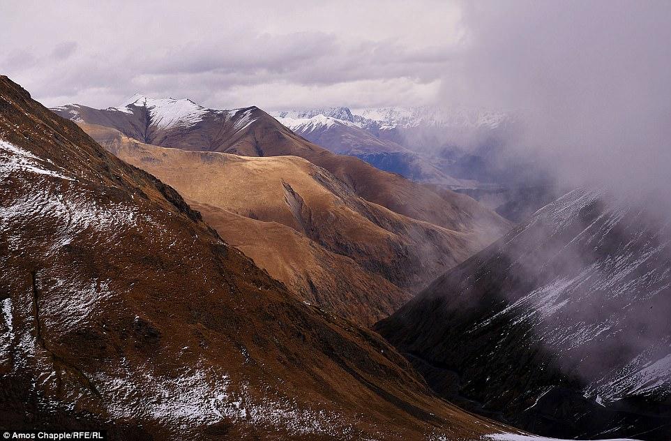 В Тушетии овцы пасутся на высоте 3000-5000 метров над уровнем моря.