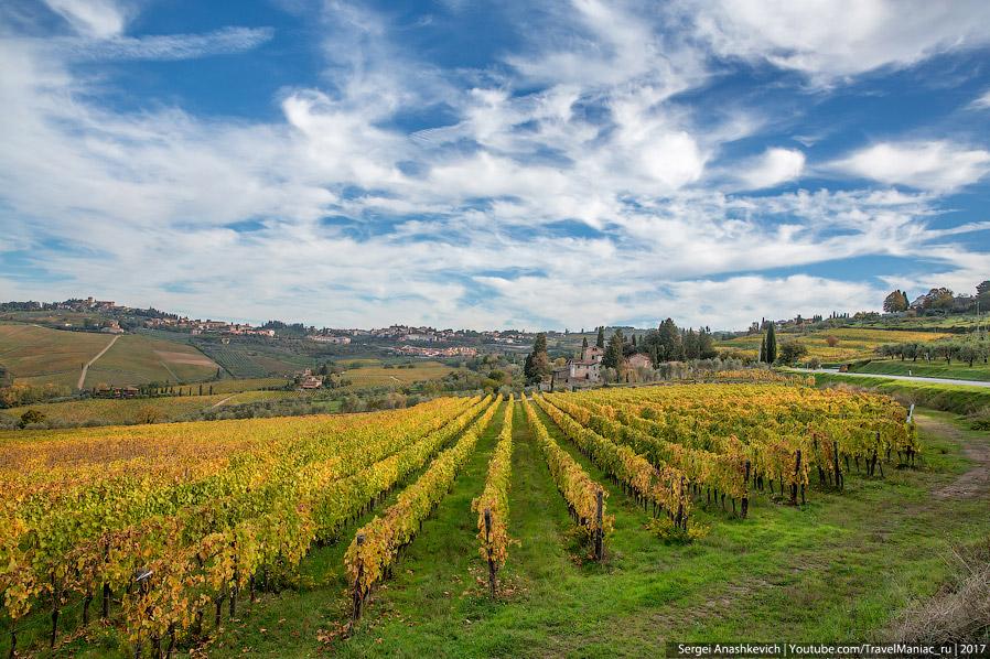 5. Холмы, виллы на вершинах — все так же, как и в Вал д'Орча, но нет пахоты, много виноградников, зе