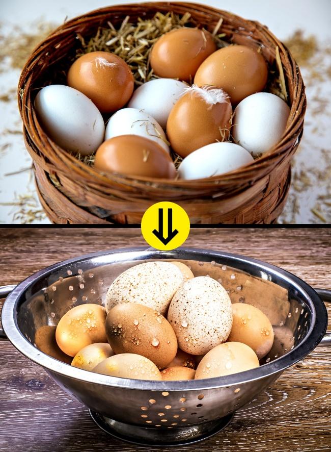 © depositphotos.com  © depositphotos.com     Инфекция сальмонеллы , которая может п
