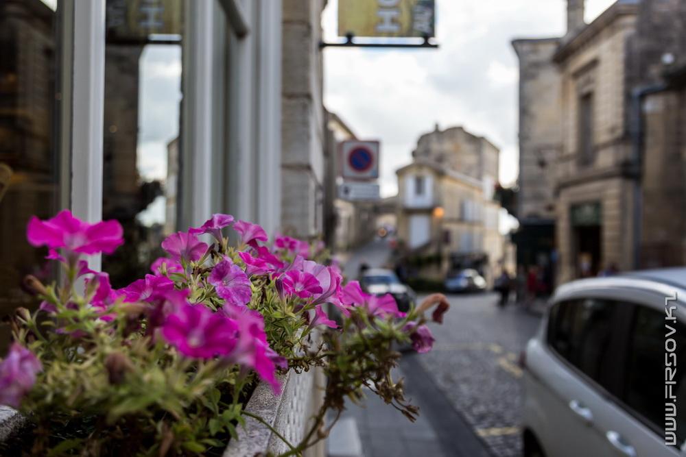 Saint-Emilion (49).jpg