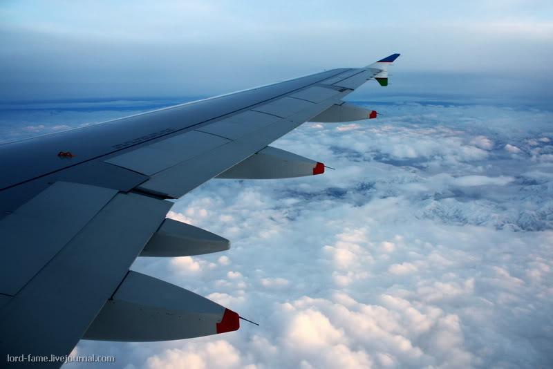 fly6_.JPG