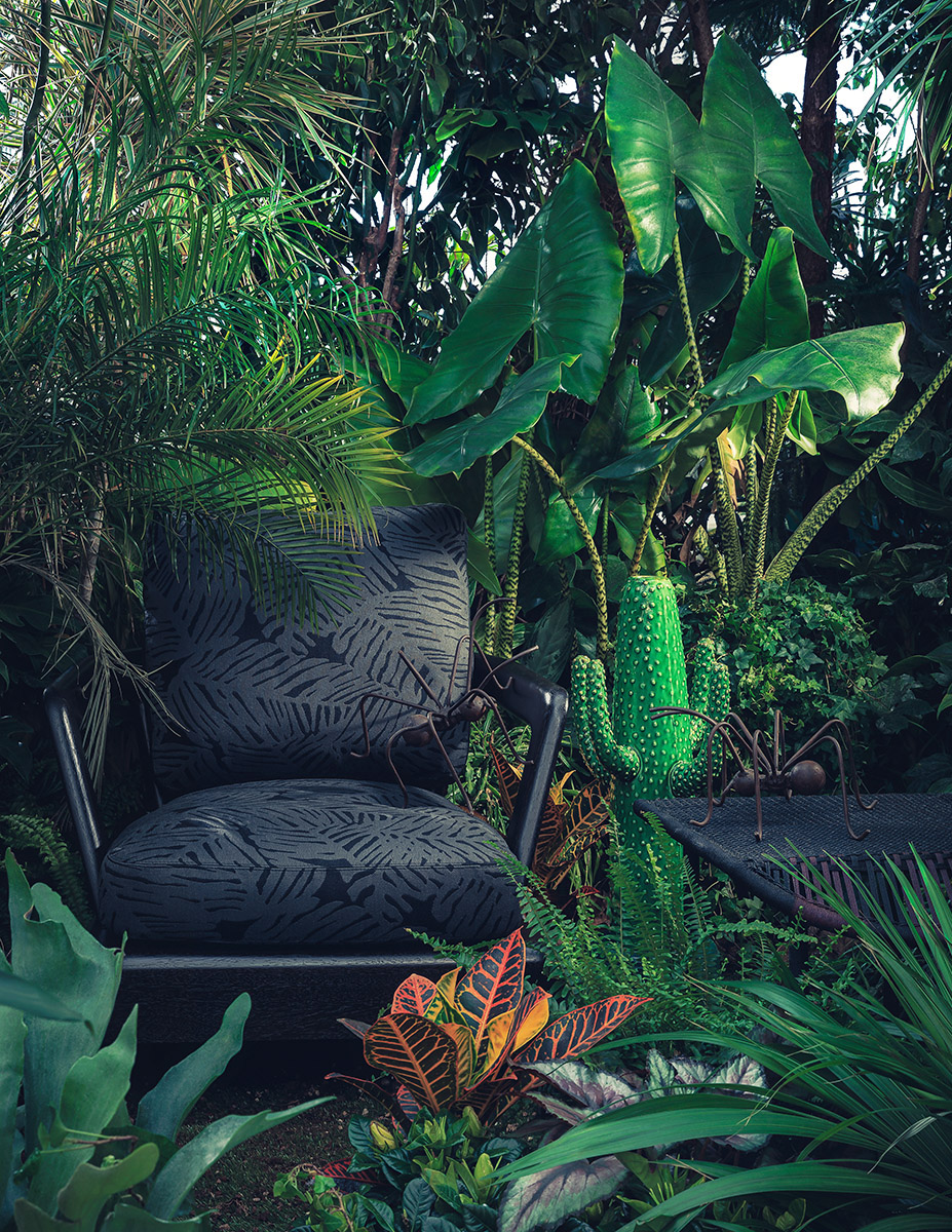 A Tropical And Jungle Photographic Series (5 pics)