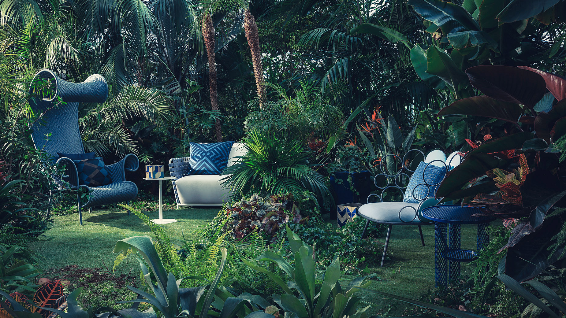 A Tropical And Jungle Photographic Series