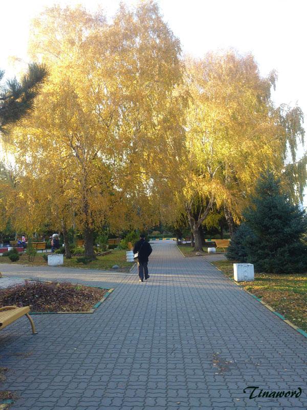 осень-2.jpg