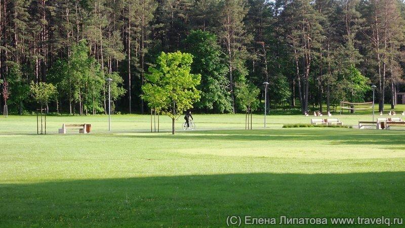 Друскининкай в окружении соснового леса