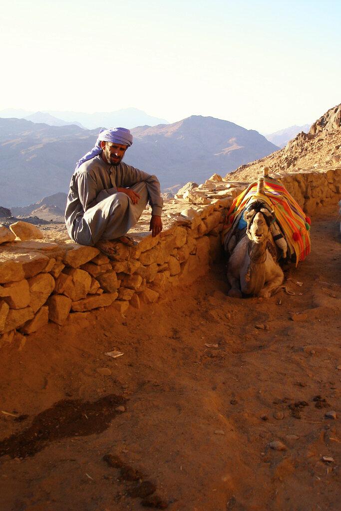 Фотография 9. Отчет о восхождении на гору Моисея в Египте. Владелец верблюда
