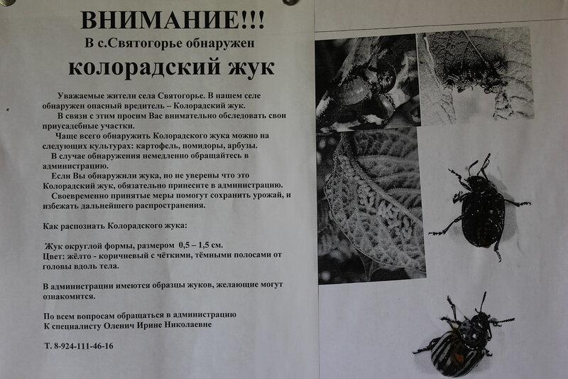 http://img-fotki.yandex.ru/get/9313/8170827.5d/0_7d674_3c41e0bf_XL.jpg