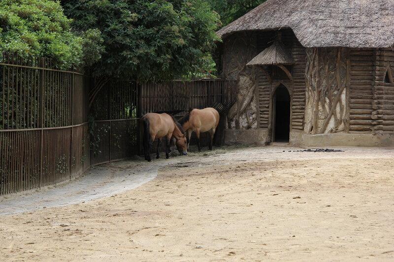 "Зоопарк ""La Menagerie"""