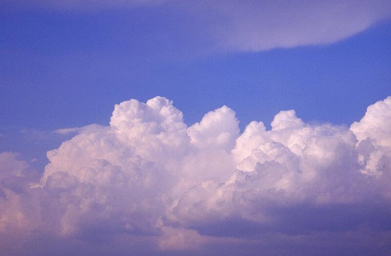 называется помещение нежное облако цветов фото гирлянд, которые традиционно