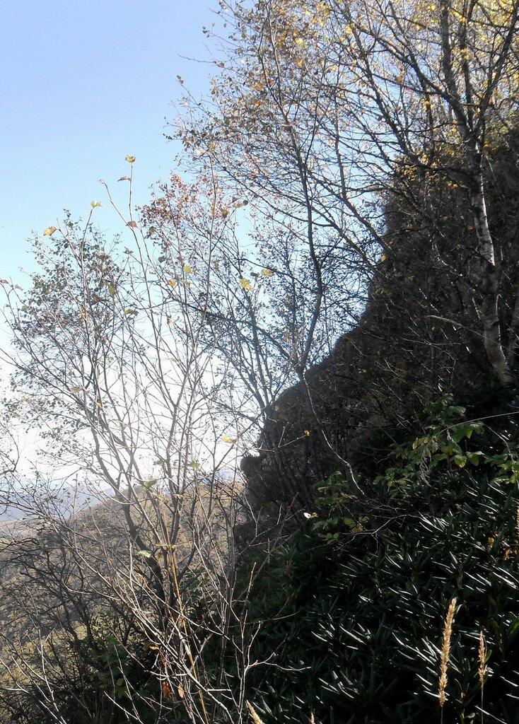 На склонах горных ... SAM_3349 - 1.JPG