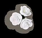 http://img-fotki.yandex.ru/get/9314/97761520.d0/0_7fbfd_33243cef_orig.png
