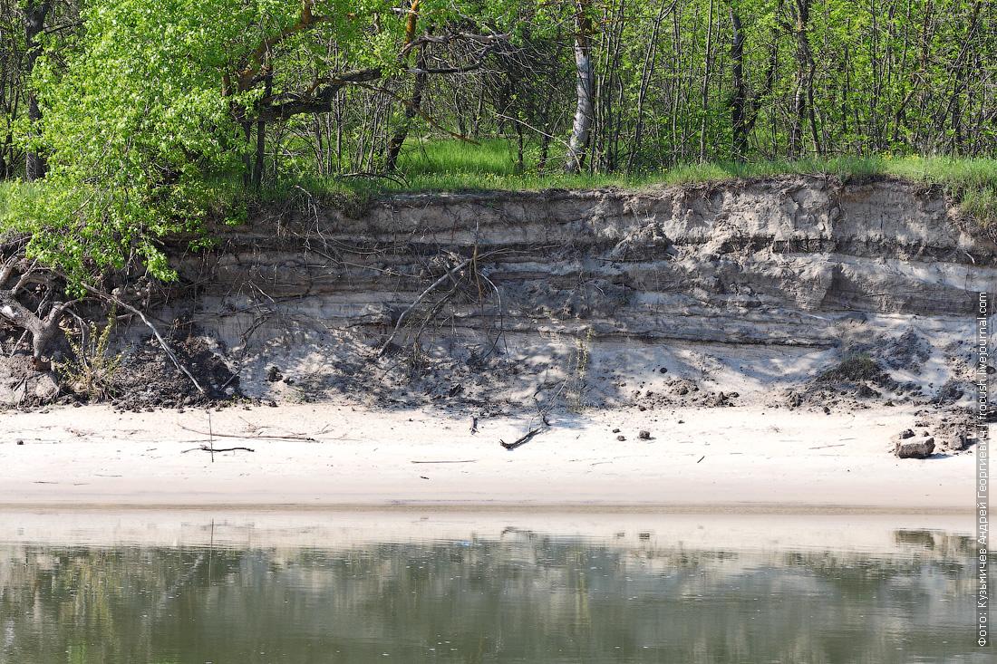 Песчаный обрыв на берегу Дона