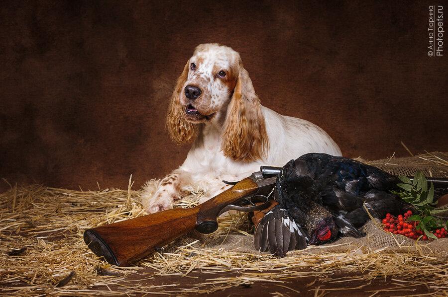 Поздравительные открытки для охотника