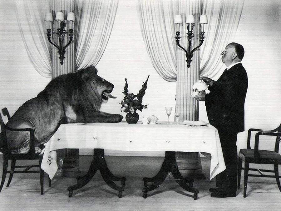 Альфред Хичкок подает чай льву, снявшемуся в качестве логотипа компании MGM. 1957 год.