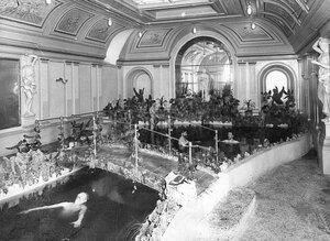 Плавательный бассейн в бане Егорова (Казачий пер., 11).