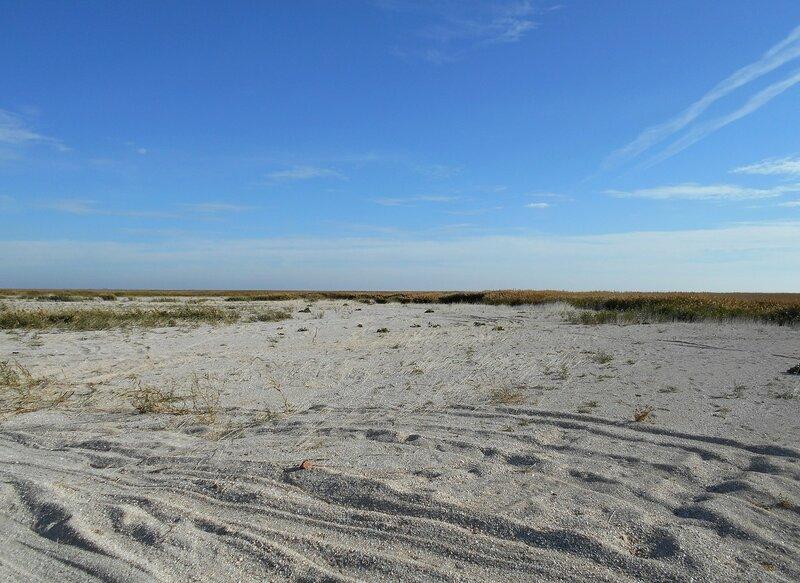 Песков простор ... DSCN1701.JPG