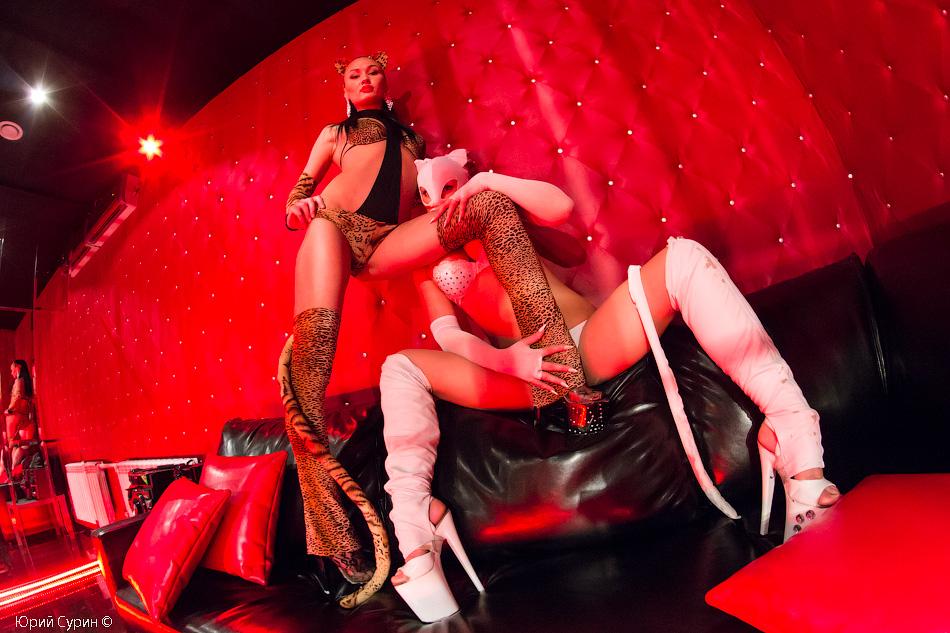 все проститутки тюмень