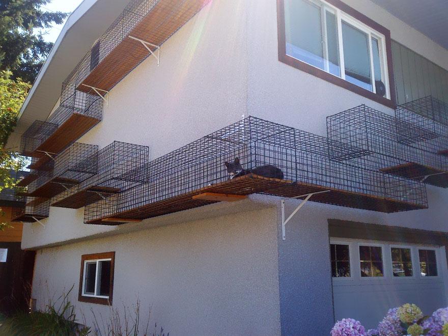 Кошкин дом и не только ... .