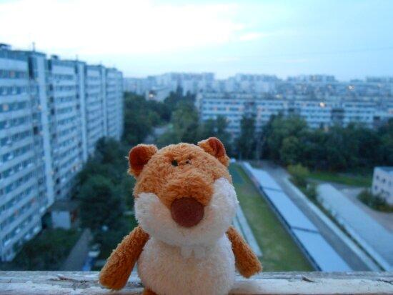 http://img-fotki.yandex.ru/get/9316/136123820.6/0_b7c9c_147e1b3a_XL.jpg