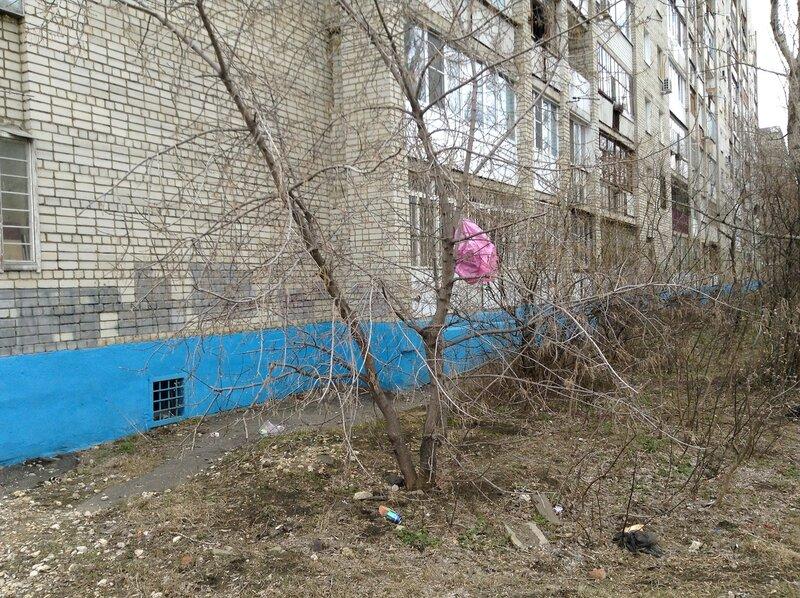мусор на деревьяв