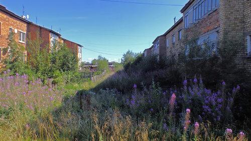 Фото города Инта №5522  Спортивная 119 и 117 06.08.2013_13:33