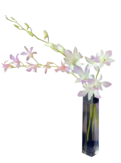 цветочные