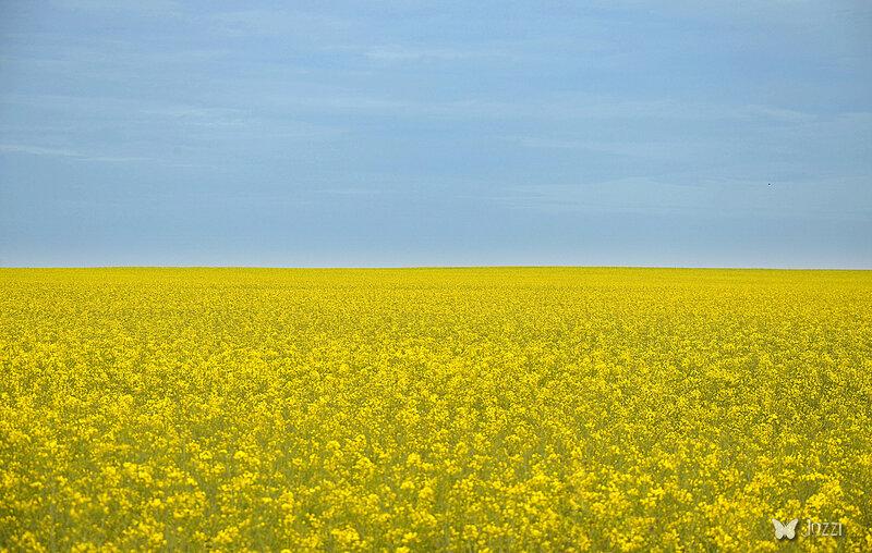 пейзаж с украинским колоритом