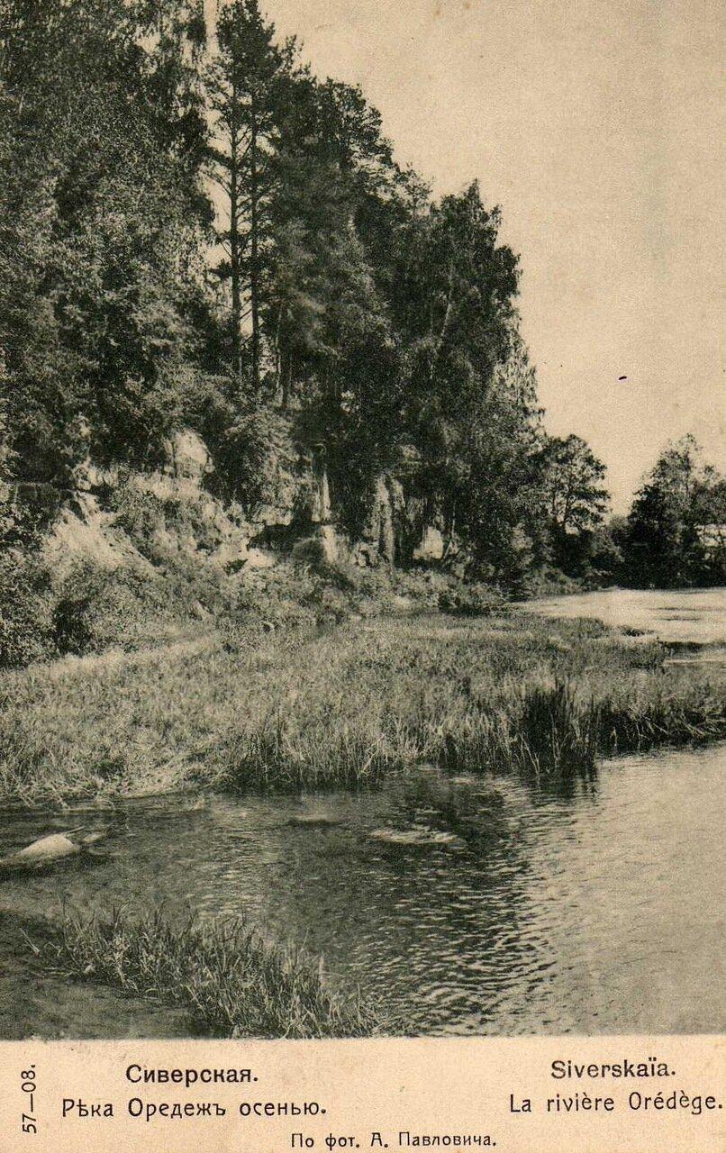 Река Оредеж осенью