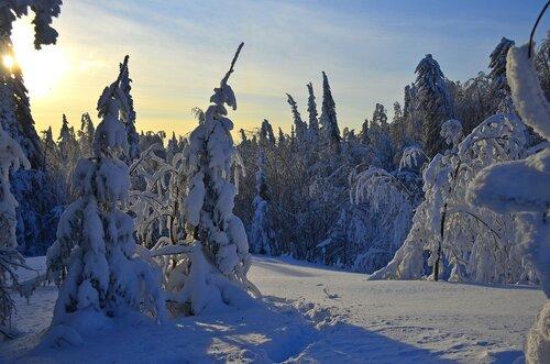 У подножья Белой горы.