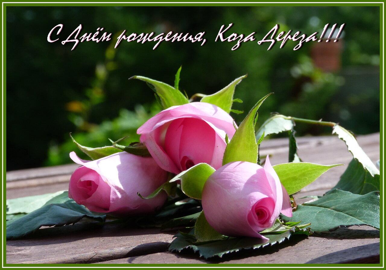 http://img-fotki.yandex.ru/get/9317/127424625.8a/0_124d08_dca62a5_XXXL.jpg