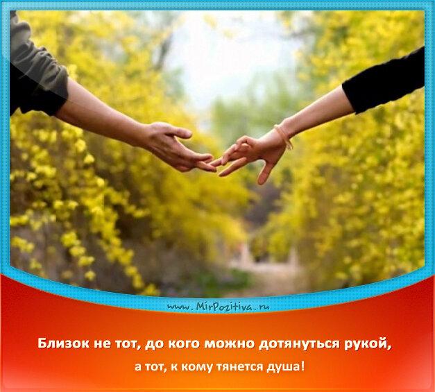 позитивчик дня: Близок не тот, до кого можно дотянуться рукой, а тот, к кому тянется душа!